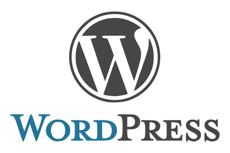 Looking After Your WordPress Website